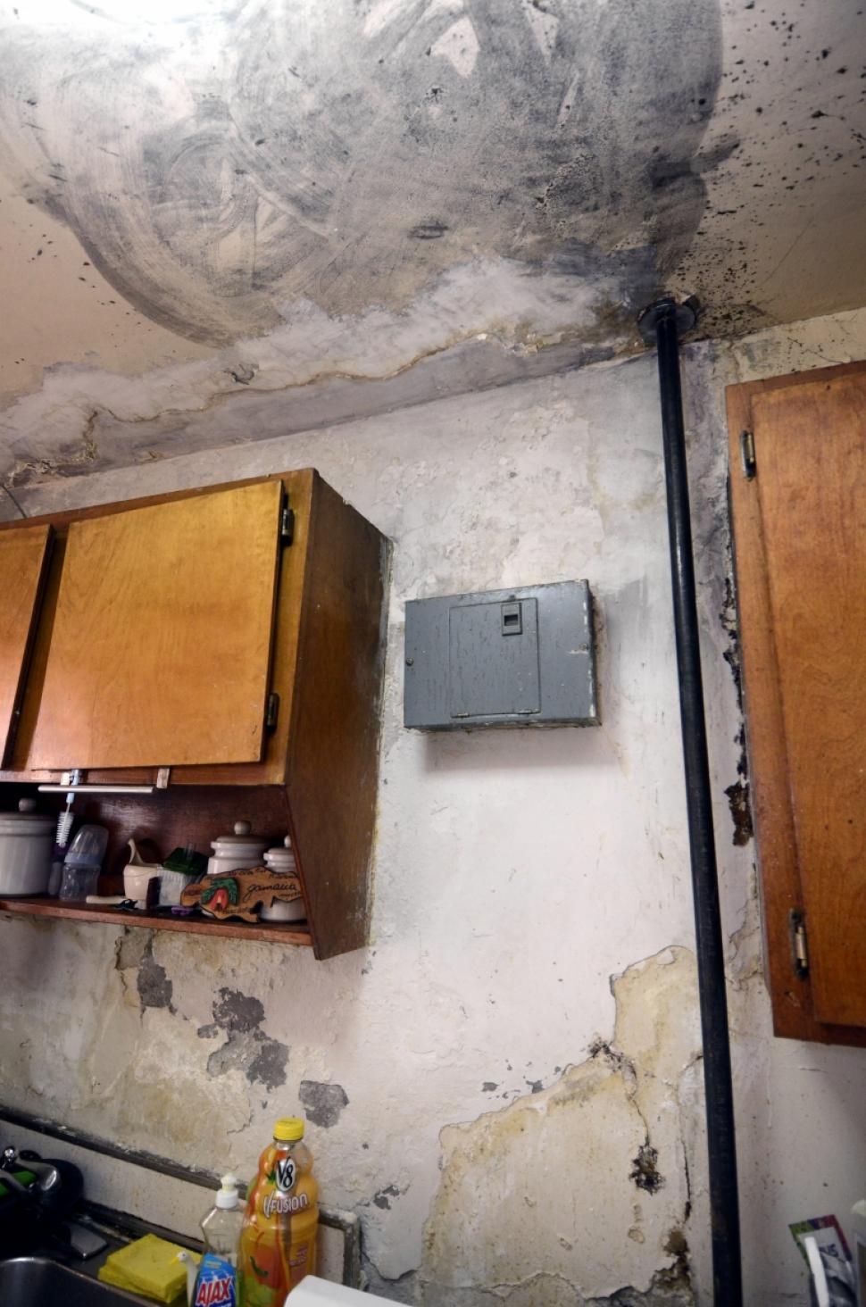 Leaking balcony waterproofing and repairs getdry for Balcony repairs